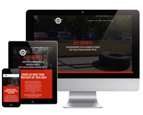 Site internet aly-sports